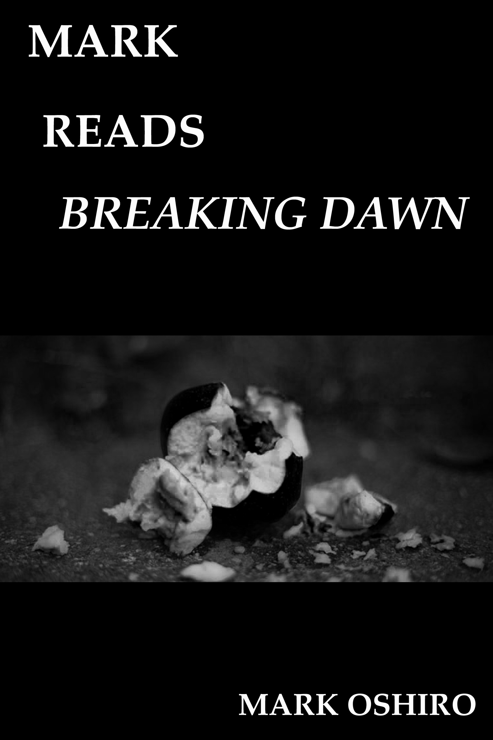 Twilight Breaking Dawn Book Cover